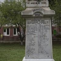 Țigănești - Monumentul Eroilor în primul și al doilea război mondial