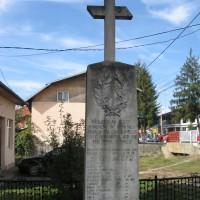 Aninoasa - Cruce dedicată eroilor căzuți în Primul Război Mondial (1916-1918) și în Al Doilea Război Mondial (1941-1945)